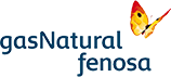 gasNatural Logo